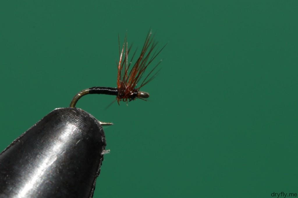 2013.04.dryfly.me.32_hackle