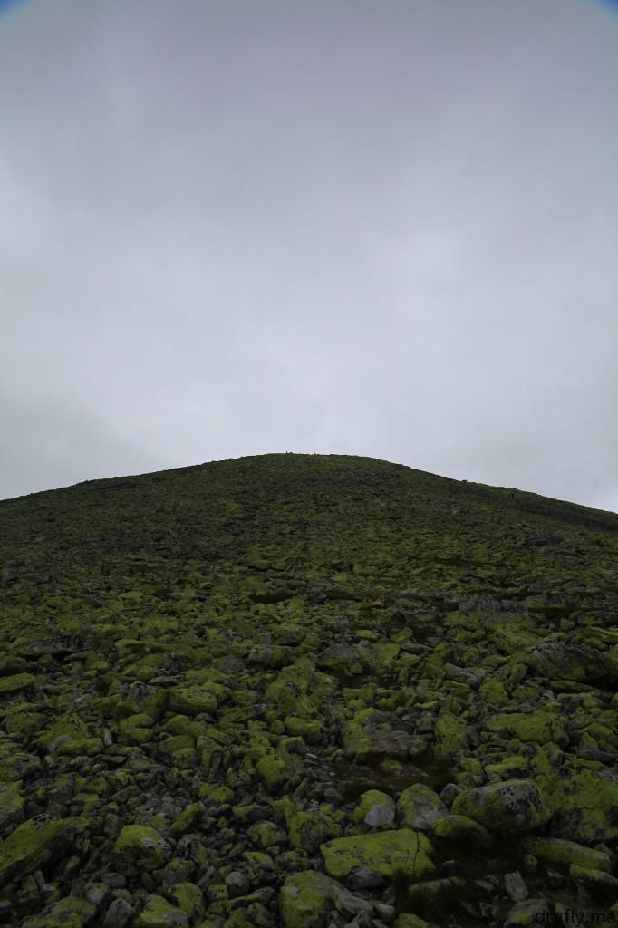 2013.04.dryfly.me.langrumpa_bugger_mountain_green