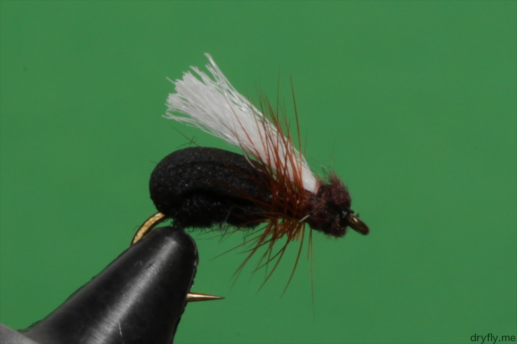 2013.05.dryfly.me.foam_ant