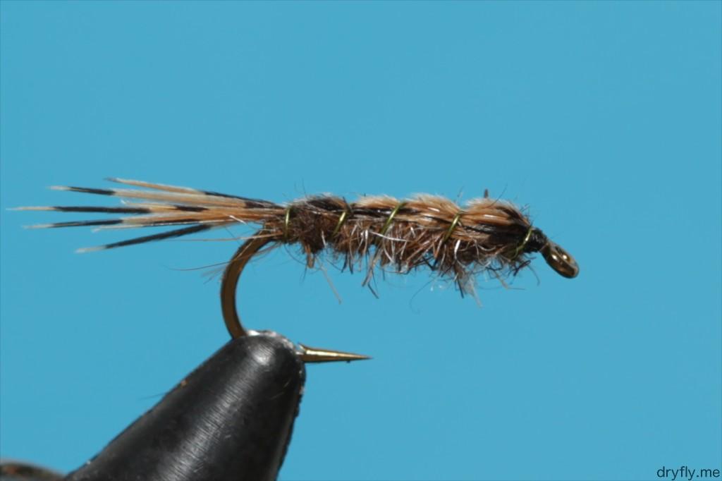 2013.dryfly.me.pheasant_nymph