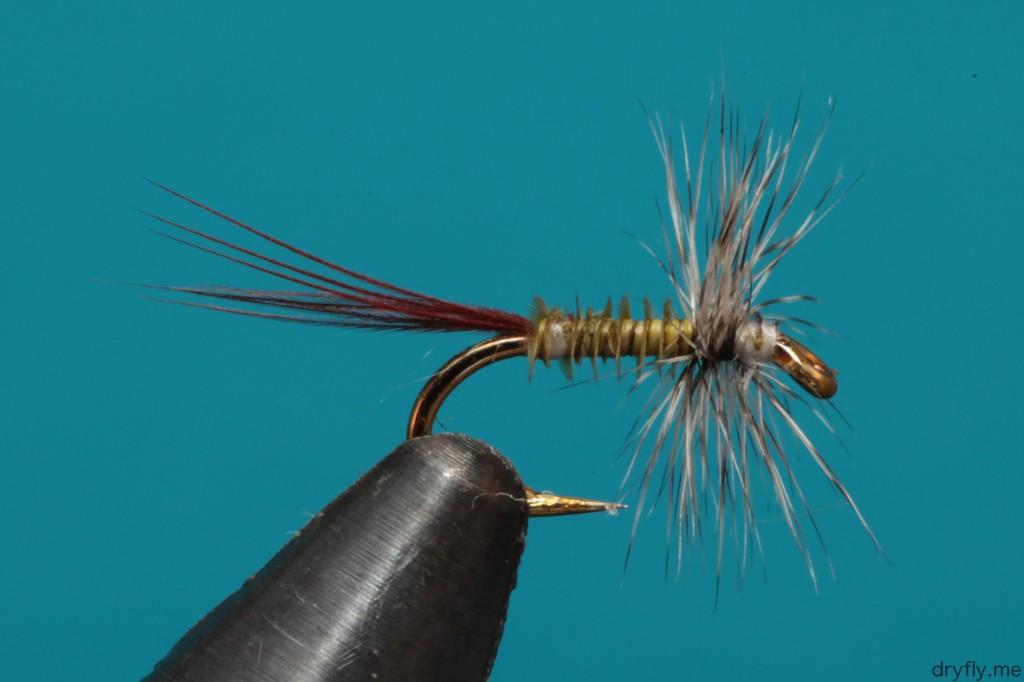 2013.08.dryfly.me.hackle