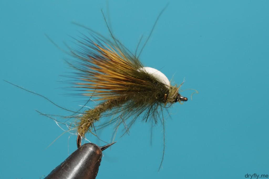 dryfly.me.2013.08.sbs_hatching_caddis_9