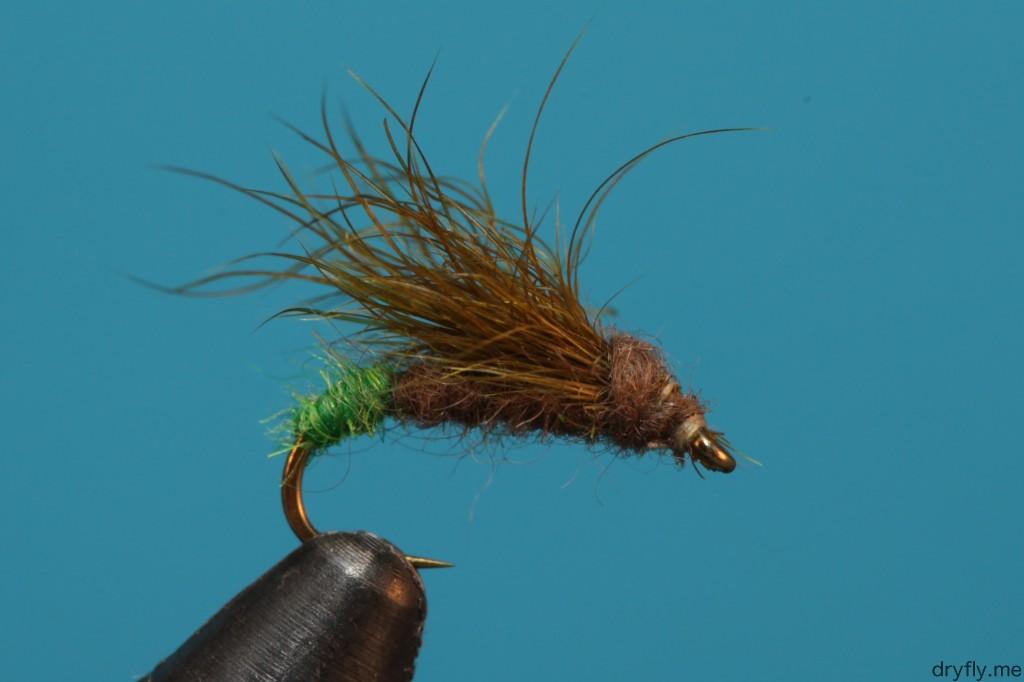 dryfly.me.2013.08.snowshoe_caddis1