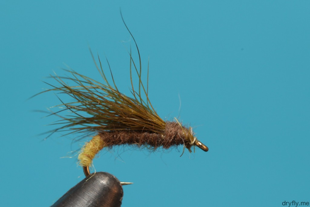 dryfly.me.2013.08.snowshoe_caddis2
