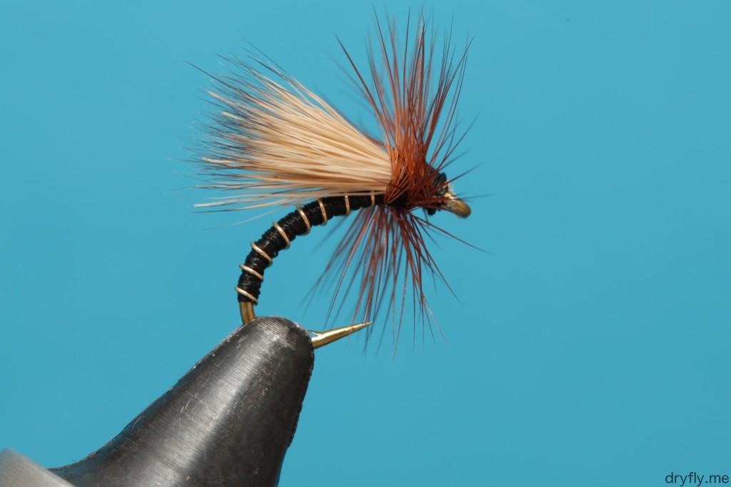 dryfly.me.2013.11.05.caddis_black_gold_2