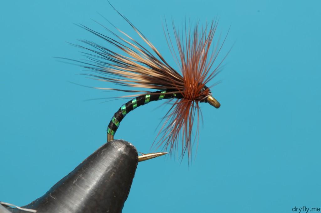 dryfly.me.2013.11.05.caddis_black_green