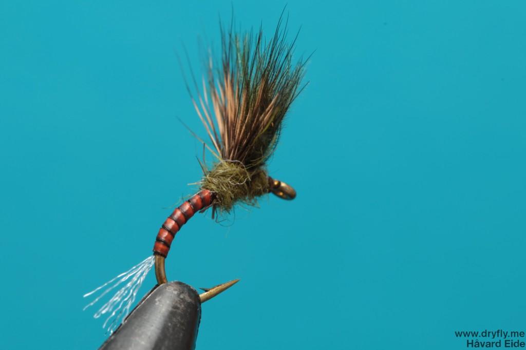 dryfly.me.2013.12.08.emerger_back