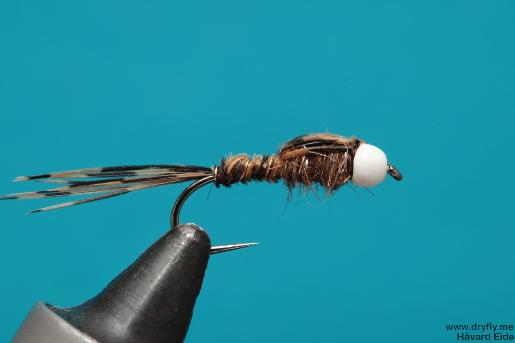 dryfly.me.2014.01.02.pt_white