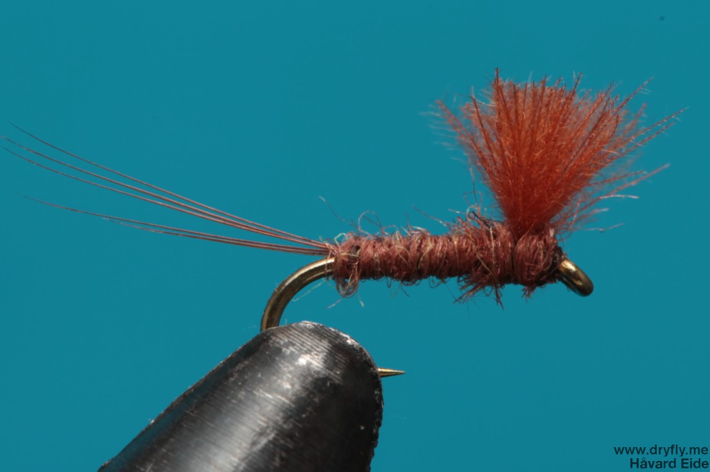 dryfly.me.2014.01.03.rusty_24