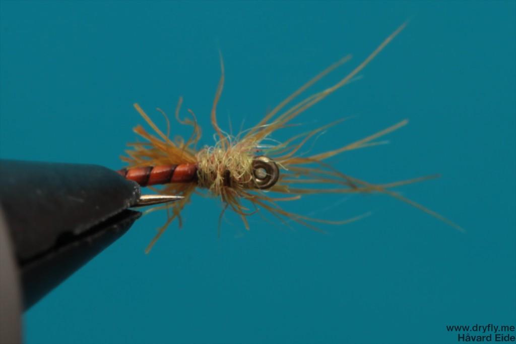 dryfly.me.2014.01.04.snowshoe_bottom