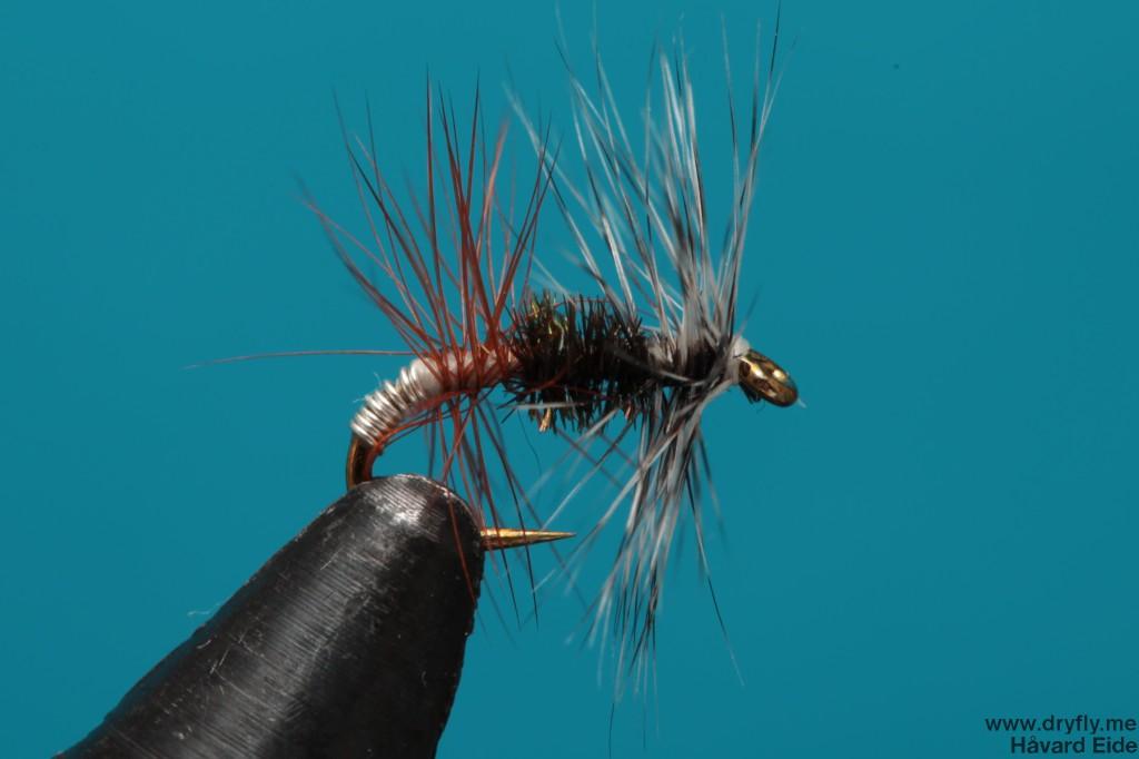 dryfly.me.2014.01.06.renegade