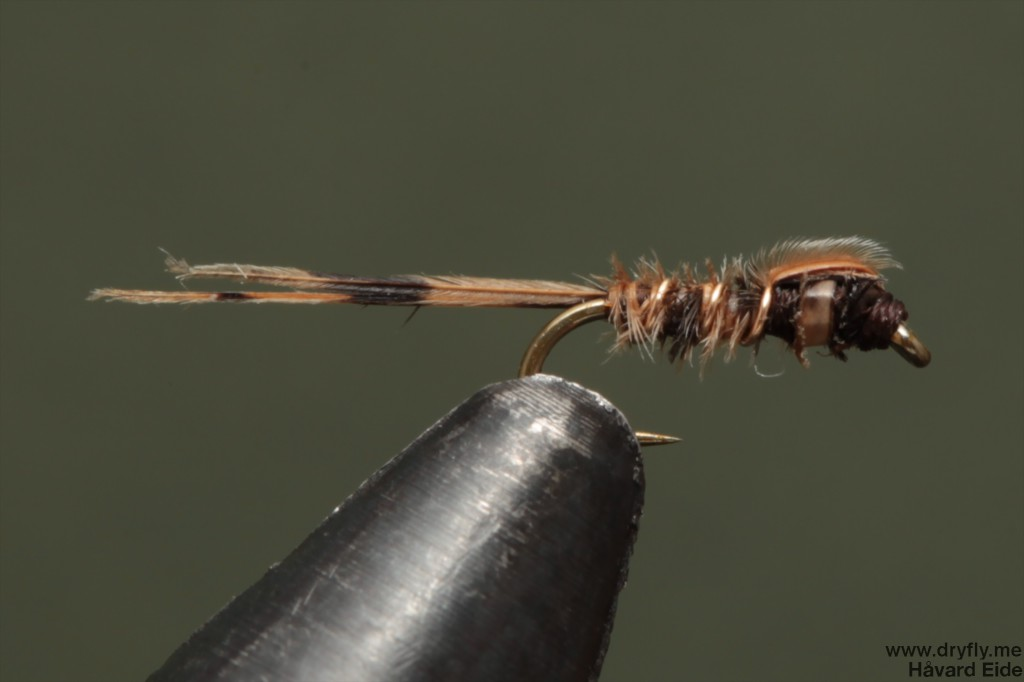 dryfly.me.2014.01.17.pheasant_tail_24