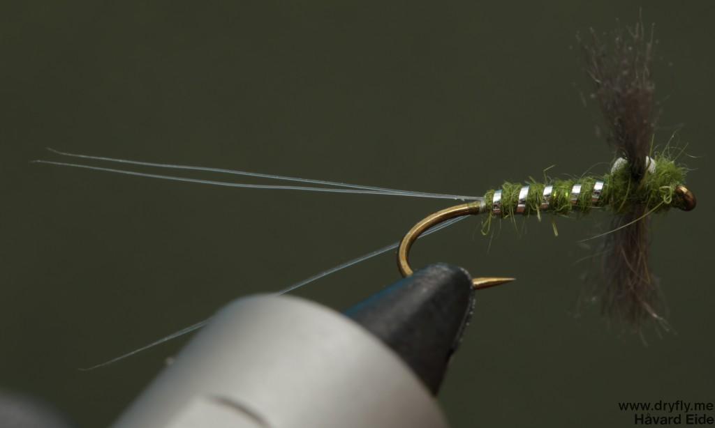 dryfly.me.2014.03.29.spent_green_botom