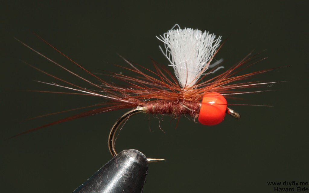 dryfly.me.2014-16.noooo