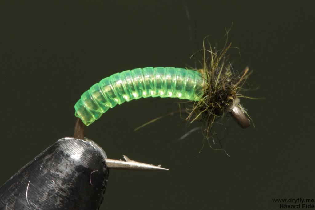 dryfly.me.2014.05.15.midge_larva