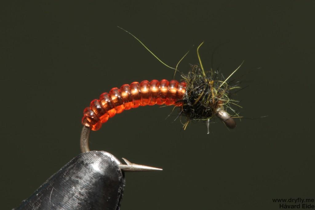 dryfly.me.2014.05.15.midge_larva_red
