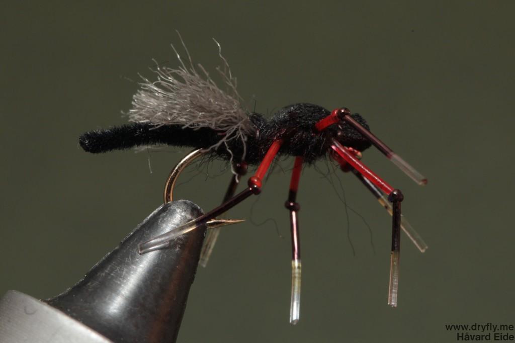 dryfly.me.2014.05.19.bibio