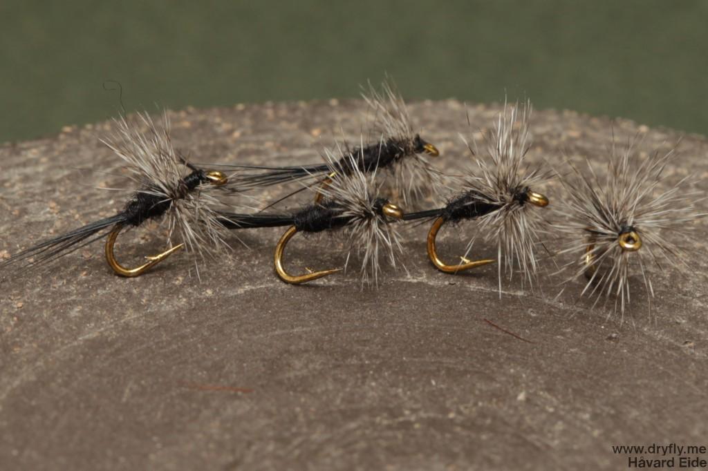 dryfly.me.2014.06.29.black_midge2_18
