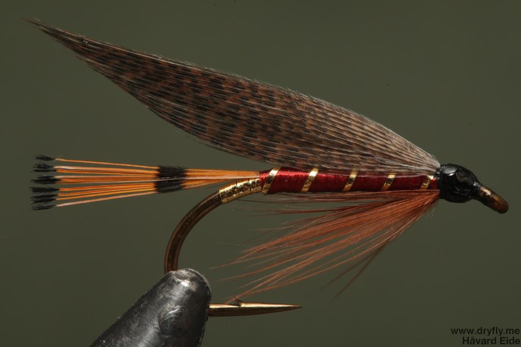 2014.09.22.dryfly.me.bergman_abbey