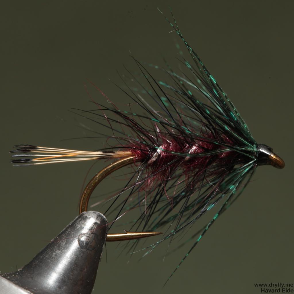 2014.11.06.dryfly.me.claret_wet