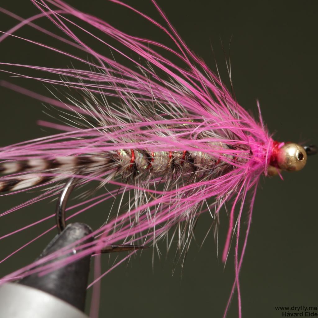 2014.11.11.dryfly.me.polar_magnus_sbs_16
