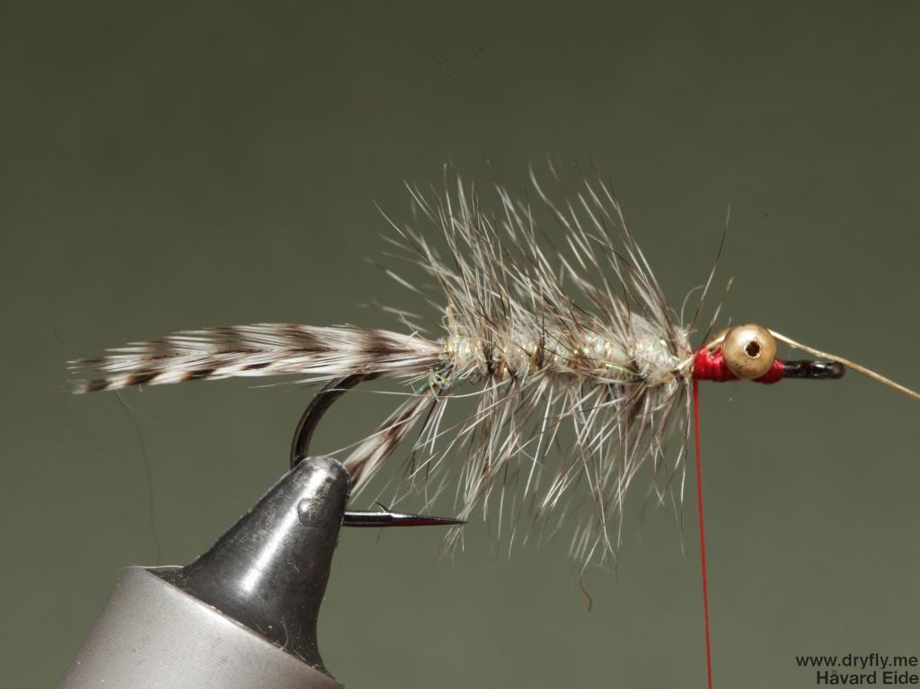 2014.11.11.dryfly.me.polar_magnus_sbs_9
