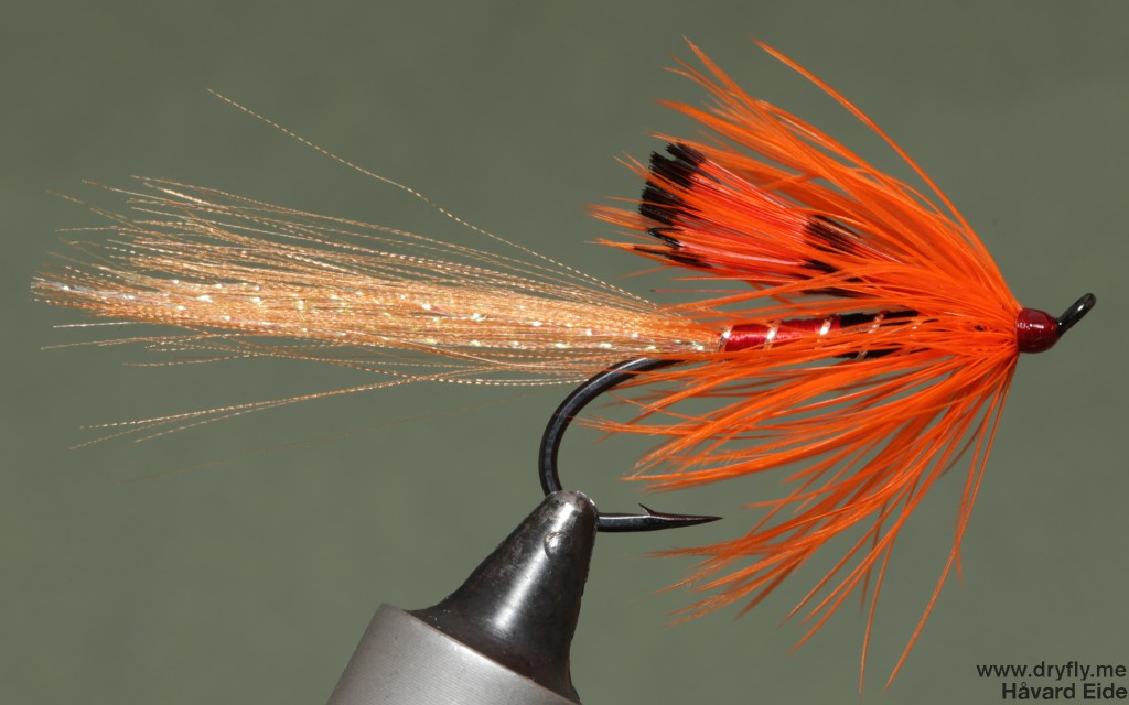 2014.12.25.dryfly.me.shrimp