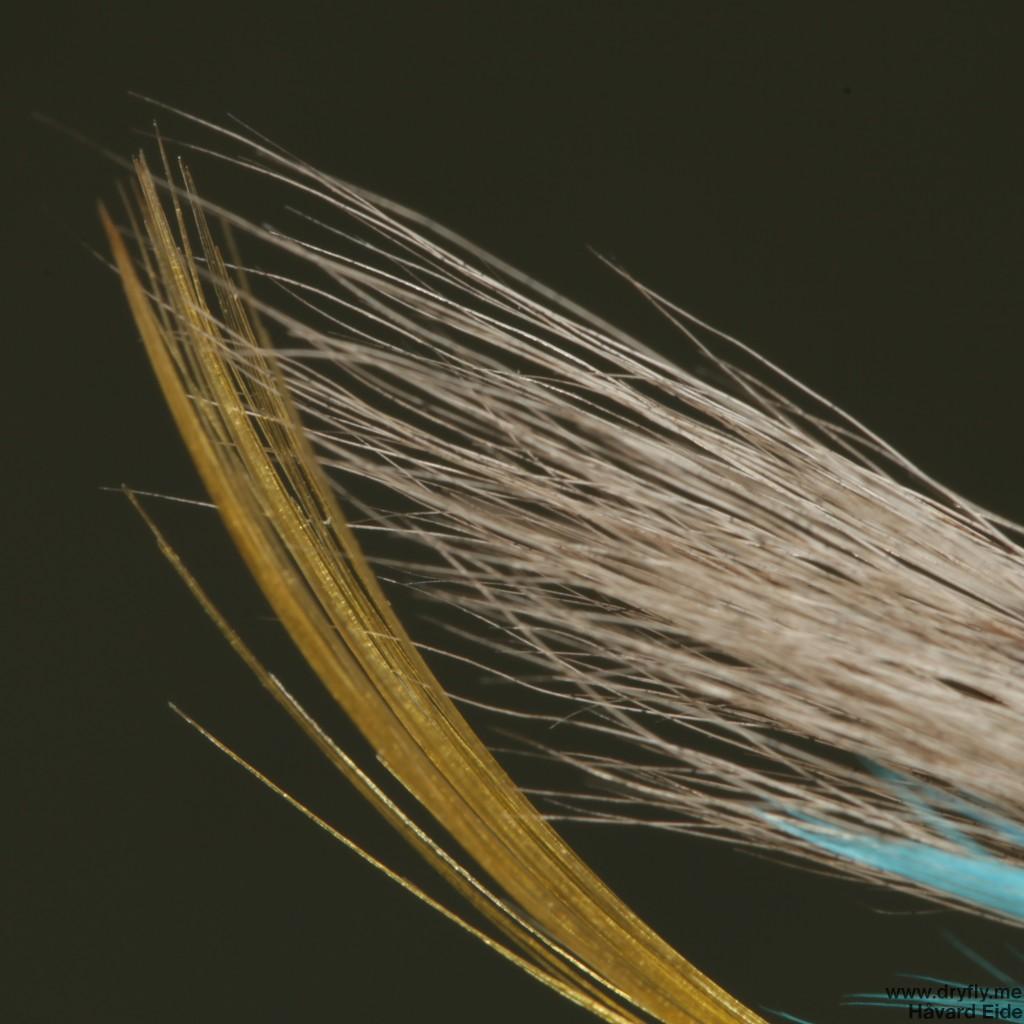 2014.12.29.dryfly.me.blue_charm_tail