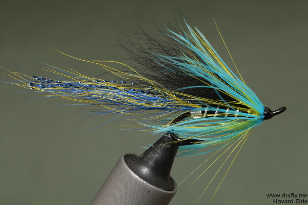 2015.01.03.dryfly.me.cascade_blue