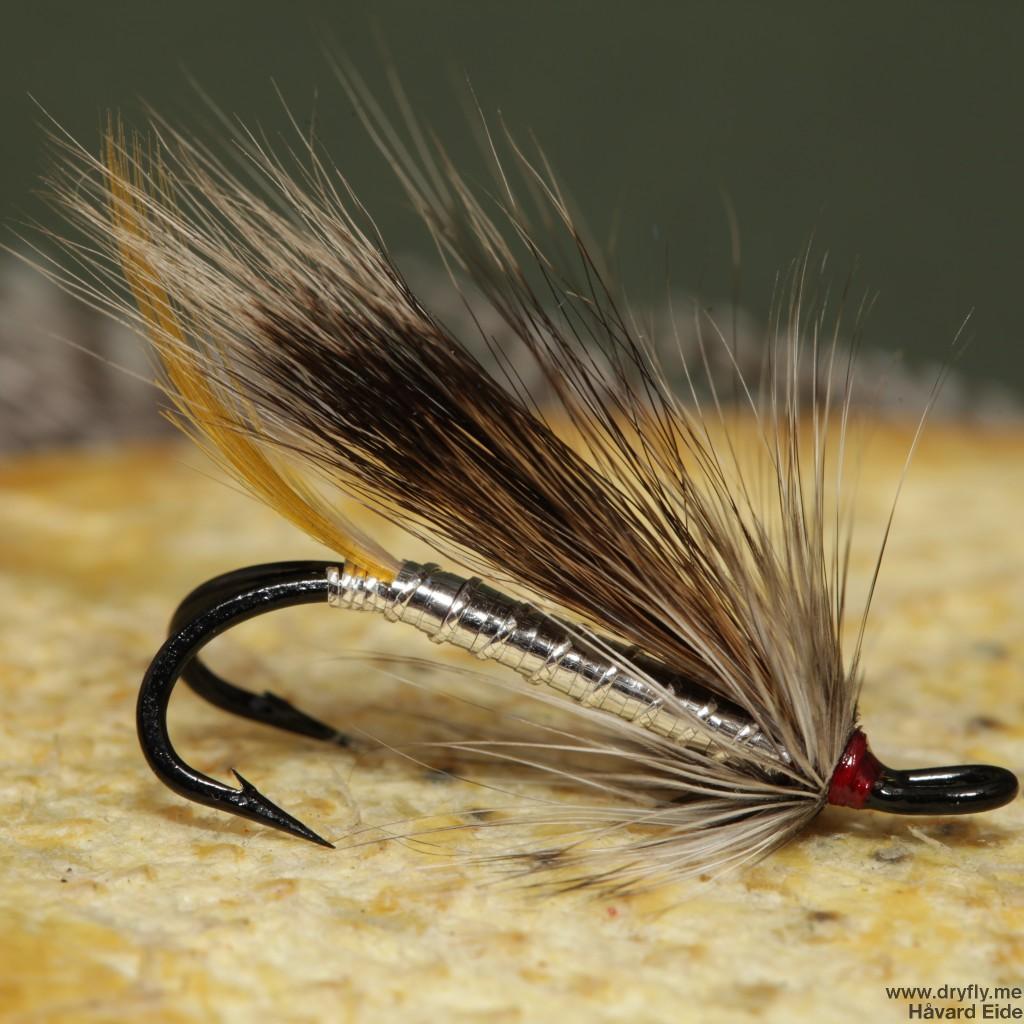 2015.01.05.dryfly.me.silver_rabbit_4