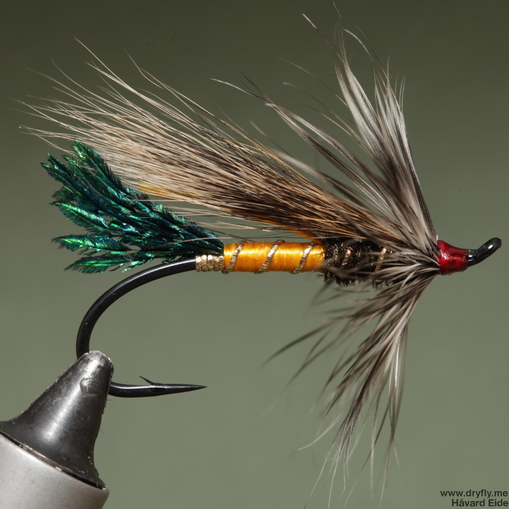 2015.02.08.dryfly.me.rusty_rat